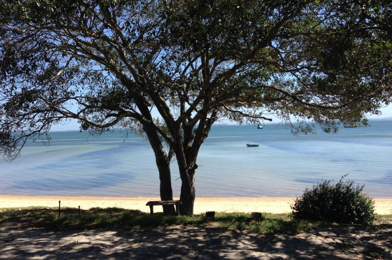 Adams Beach Camping Ground - Accommodation Newcastle