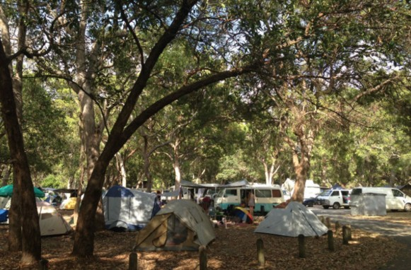 Adder Rock Camping Ground - Accommodation Newcastle