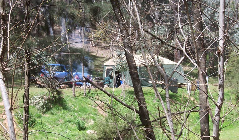Abercrombie Caves campground - Accommodation Newcastle