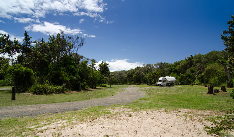 Banksia Green campground - Accommodation Newcastle