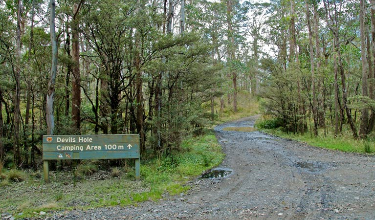 Devils Hole campground and picnic area - Accommodation Newcastle