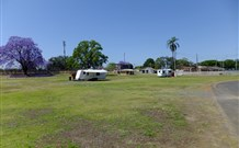 Grafton Showground Caravan Park - Accommodation Newcastle