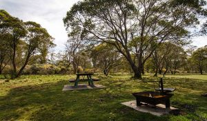 Little Murray campground - Accommodation Newcastle
