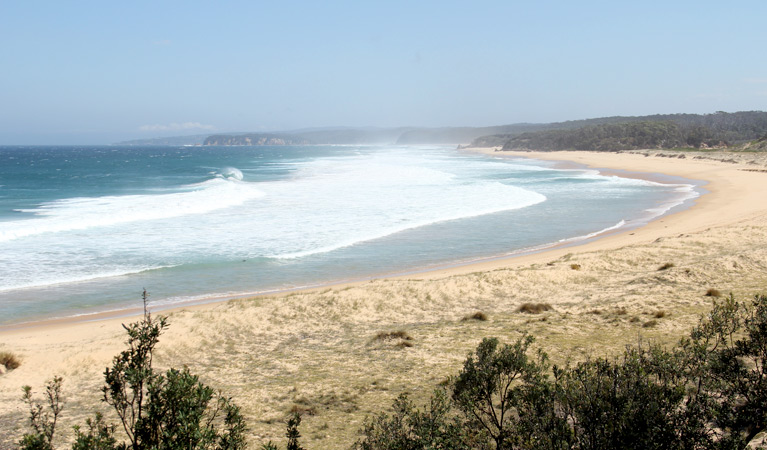 Middle Beach campground - Accommodation Newcastle