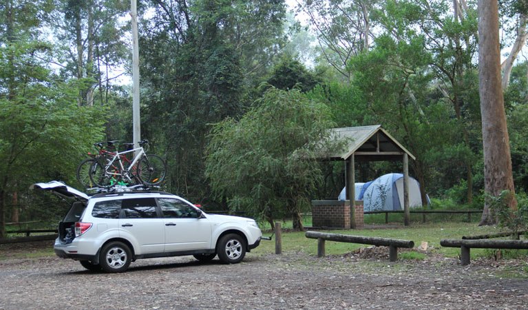 Mill Creek campground - Accommodation Newcastle