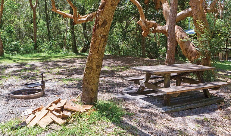 Station Creek campground - Accommodation Newcastle