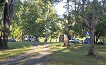 The Channon Village Campground - Accommodation Newcastle