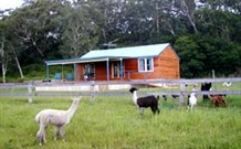 Moorallie Cottage Farm Stay - Accommodation Newcastle