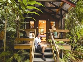 Cape Trib Beach House Retreat - Accommodation Newcastle