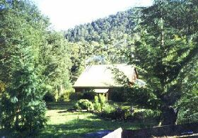 Horse Haven Farmstay - Accommodation Newcastle