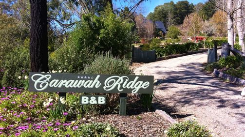 Carawah Ridge Bed and Breakfast - Accommodation Newcastle