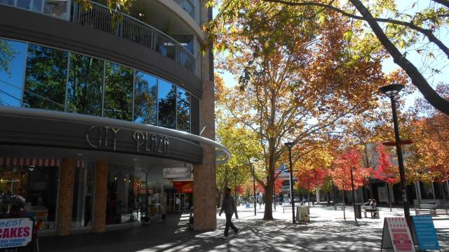 Canberra Wide Apartments - City Plaza - Accommodation Newcastle