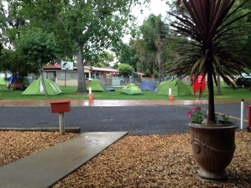 Young Caravan Tourist Park - Accommodation Newcastle