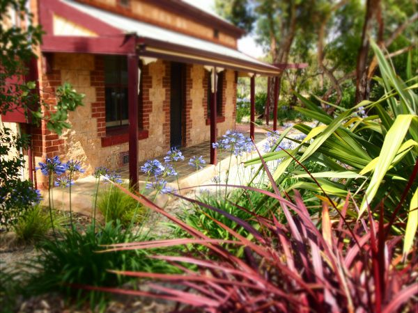 The Creek Cottage - Accommodation Newcastle