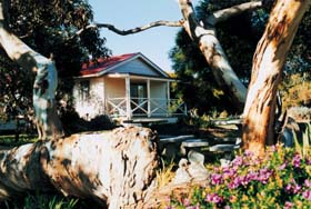 Cape Jervis Holiday Units - Accommodation Newcastle