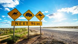 Nullarbor Roadhouse - Accommodation Newcastle