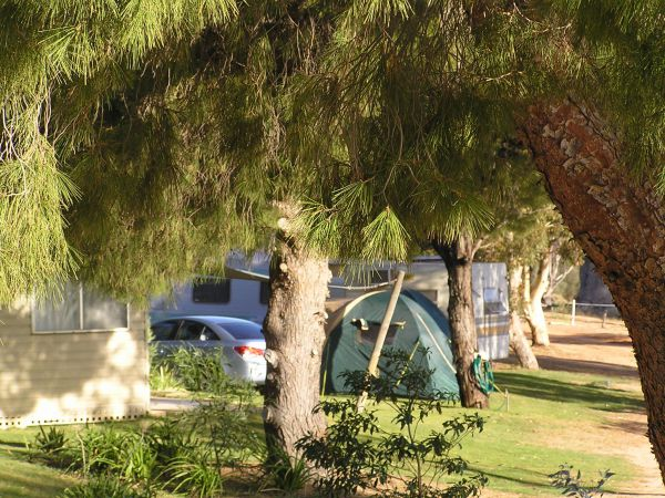 Barmera North Lake Caravan Park - Accommodation Newcastle