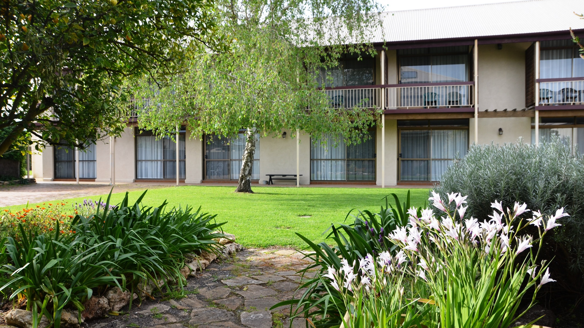 Coonawarra Motor Lodge - Accommodation Newcastle
