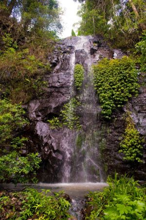 Nimbin Waterfall Retreat - Accommodation Newcastle
