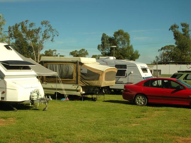 Crocodile Caravan Park - Accommodation Newcastle