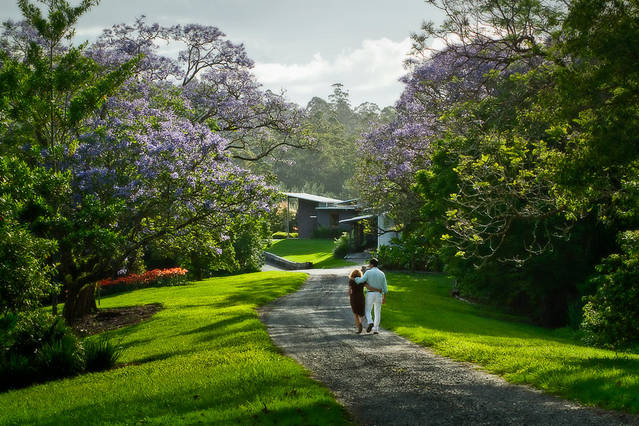 Lily Pily Country House - Accommodation Newcastle