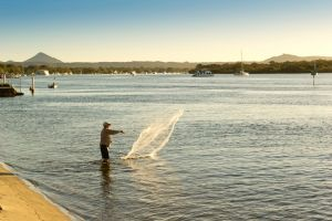 Noosa River Holiday Park - Accommodation Newcastle