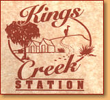 Kings Creek Station - Accommodation Newcastle