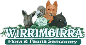 Wirrimbirra Sanctuary - Accommodation Newcastle