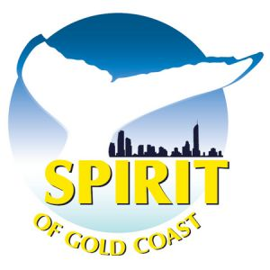 Spirit of Gold Coast Whale Watching - Accommodation Newcastle