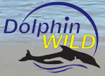Dolphin Wild - Accommodation Newcastle