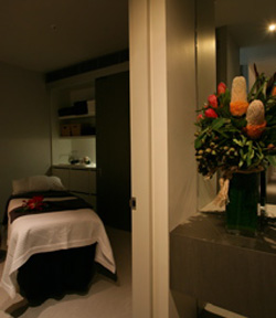Alkaline Spa  Clinic - Accommodation Newcastle
