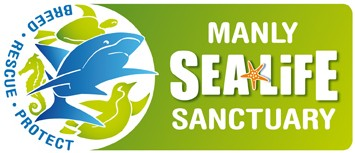 Manly SEA LIFE Sanctuary - Accommodation Newcastle