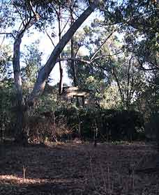 Ghost House Walk Trail Yanchep National Park - Accommodation Newcastle