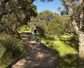 Leschenault Peninsula Conservation Park - Accommodation Newcastle