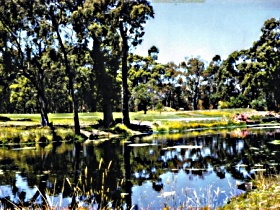 Smithton Country Club - Accommodation Newcastle