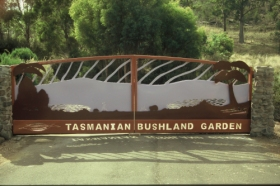 Tasmanian Bushland Garden - Accommodation Newcastle