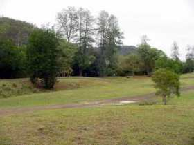 Brooyar State Forest - Accommodation Newcastle