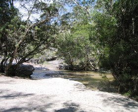 Davies Creek National Park and Dinden National Park - Accommodation Newcastle