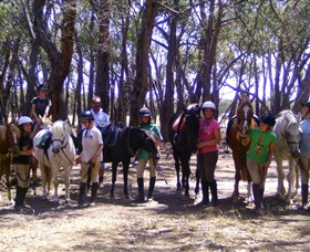 Bellarine Horse Riding Centre - Accommodation Newcastle