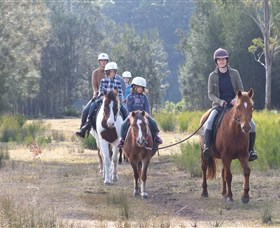 Horse Riding at Oaks Ranch and Country Club - Accommodation Newcastle