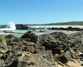 Coastal Walks - Bermagui - Accommodation Newcastle