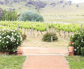 Brindabella Hills Winery - Accommodation Newcastle