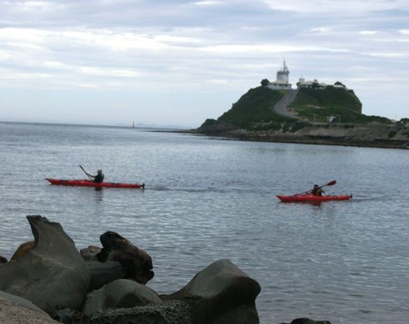 Newcastle Kayak Tours - Accommodation Newcastle