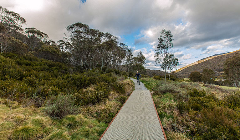 Thredbo Valley track - Accommodation Newcastle