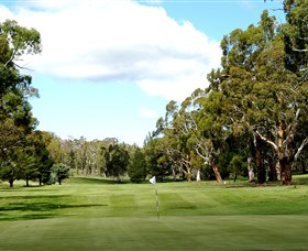 Cooma Golf Club - Accommodation Newcastle