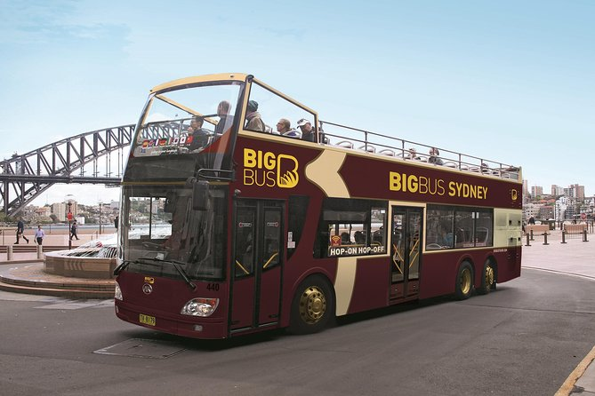 Big Bus Sydney and Bondi Hop-on Hop-off Tour - Accommodation Newcastle