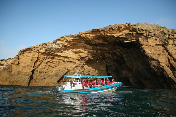 Coastal Adventure Tour From Newcastle - Accommodation Newcastle