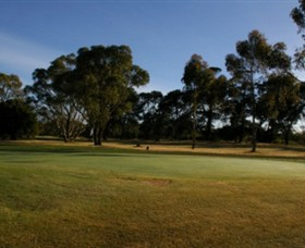 Winchelsea Golf Club - Accommodation Newcastle