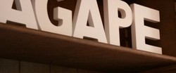 Agape Organic Restaurant  Bar - Accommodation Newcastle
