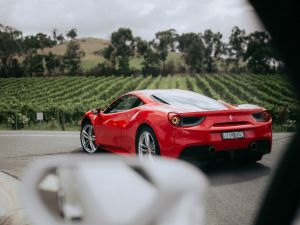 The Prancing Horse Supercar Drive Day Experience - Melbourne Yarra Valley - Accommodation Newcastle
